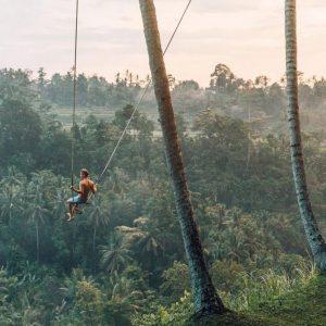 هتل های جنگلی بالی-الی گشت