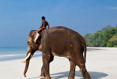 بهترین سواحل هند