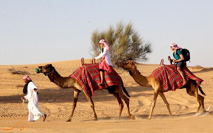 شترسواری در دبی