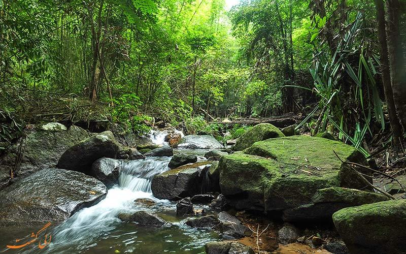 منطقه Khao Phra Thaeo Game Reserve