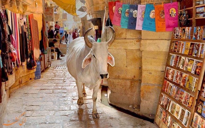 توصیه های مسافران برای سفر به هند-بهداشت