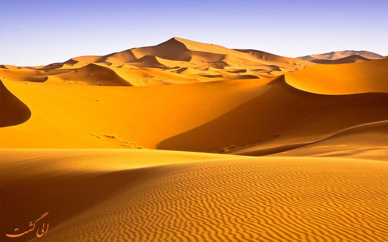 پوشش گیاهی در بیابان ها