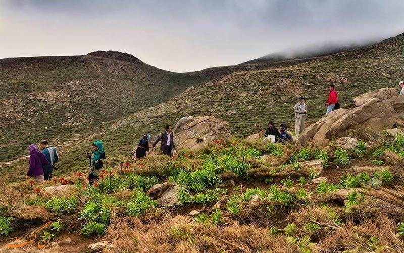 موقعیت گلستان کوه