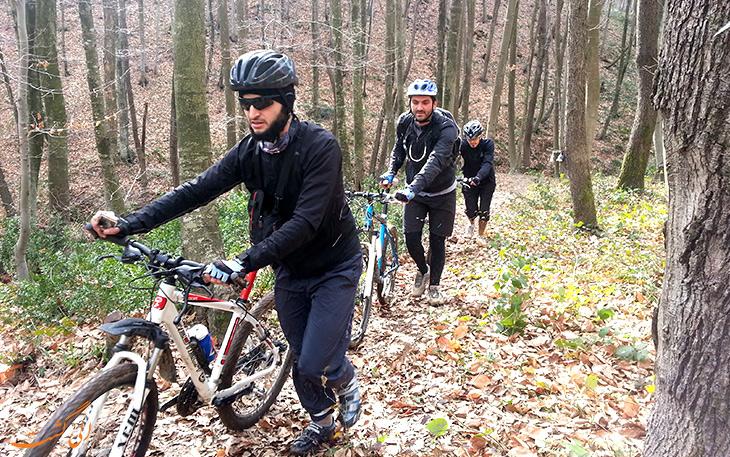 دوچرخه سواری در جنگل بلگراد