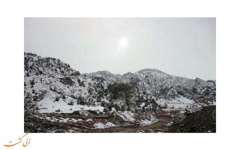 شهر کلیبر