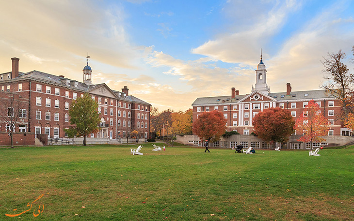 دانشگاه هاروارد