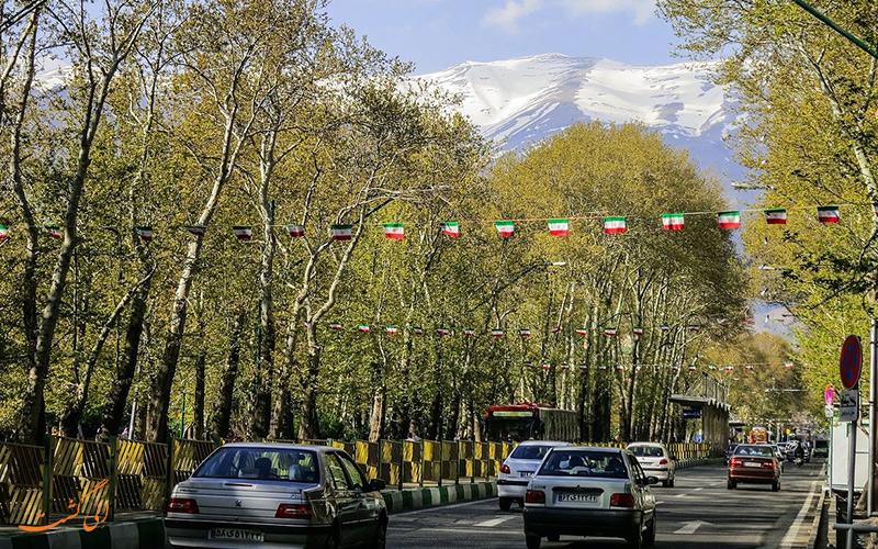 ثبت درختان خیابان ولیعصر در یونسکو