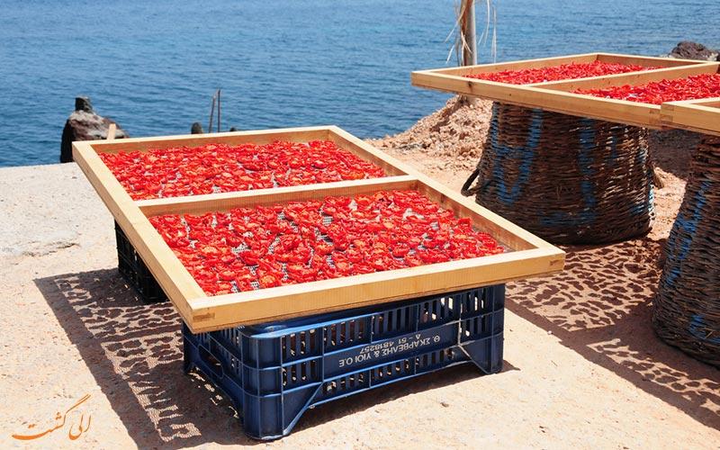 ● موزه ی صنعتی گوجه فرنگی