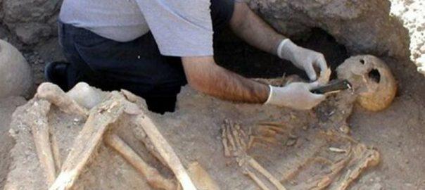 اسکلت باستانی در استان البرز کشف شد!