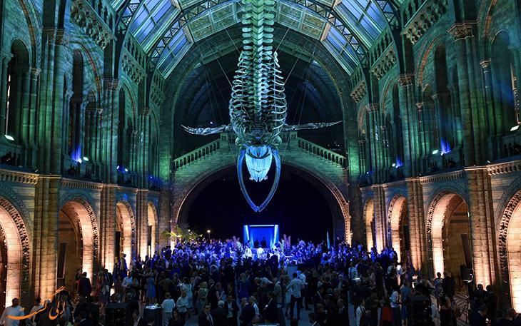 بخش های مختلف موزه تاریخ طبیعی لندن
