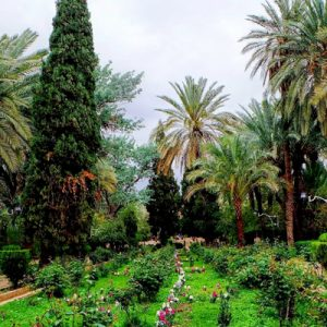باغ گشن در طبس