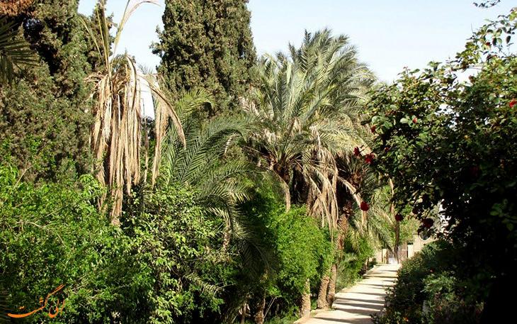 طبیعت سرسبز باغ گلشن