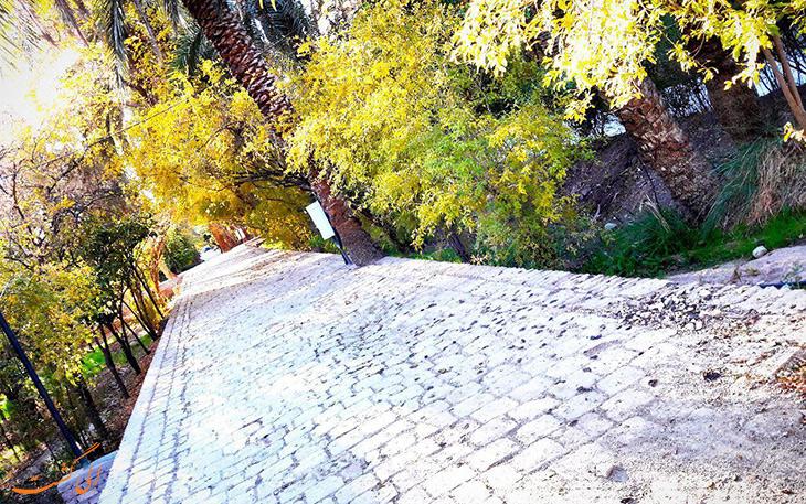 پیاده روی در باغ گلشن