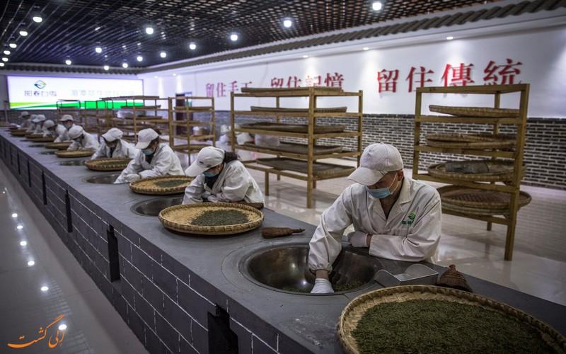 کارخانه چای