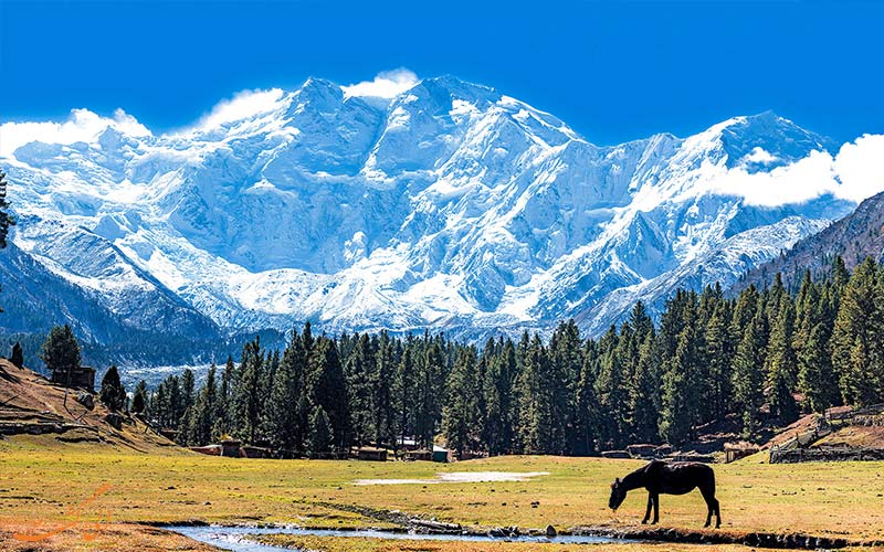 کوه نانگا پاربات