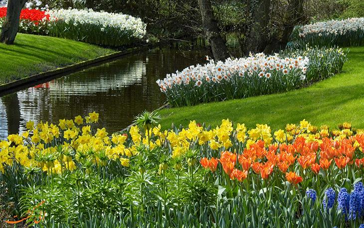 شگفتی ها و حقایقی از فصل بهار