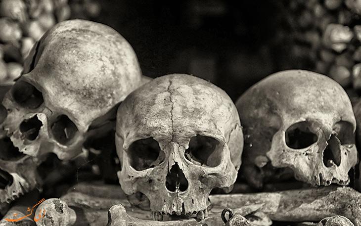 تاثیر طاعون بر تاریخ بشریت و اروپا