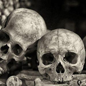 حقایق طاعون یا مرگ سیاه