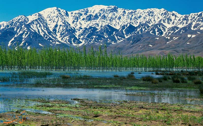 گردشگاه چشمه ی سیاسرد