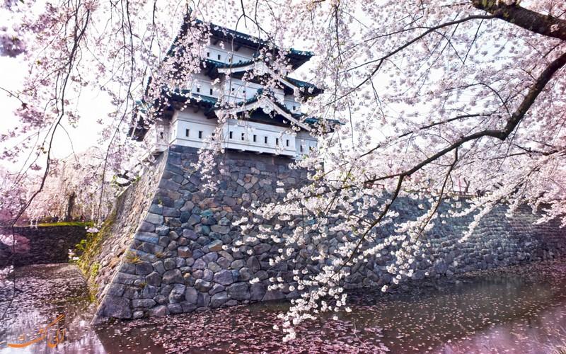 بهار در ژاپن
