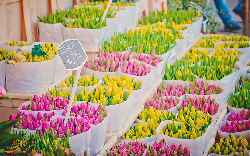 بازار گل آمسترام