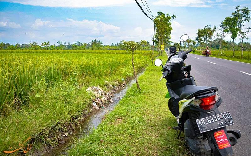 کرایه استوکر در نکات سفر به شرق آسیا