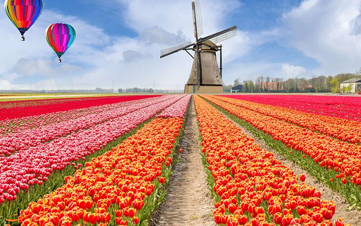 سفرهای خارجی در بهار