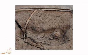 کشف قدیمی ترین جای پای جهان