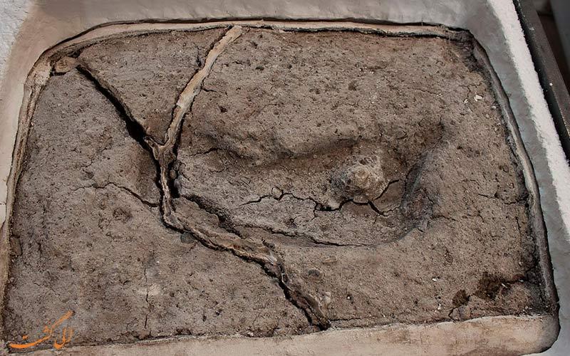 قدیمی ترین جای پای جهان ، جای پایی کشف شده در کشور شیلی