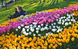 دیدنیهای استانبول در بهار