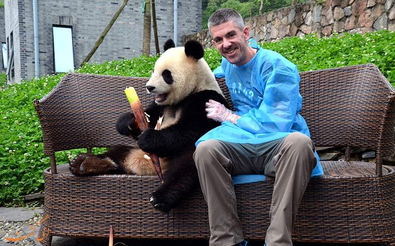 دیدن پاندا در چین