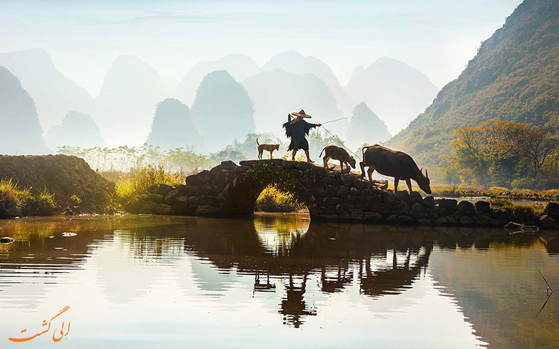 معرفی طبیعت شهر یانگشو چین