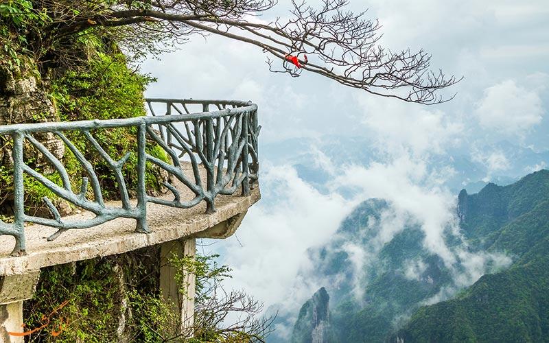 نمای-دره-پارک ملی تیانمن چین