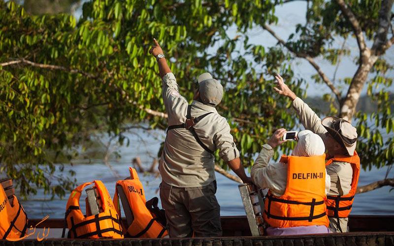 بازدید-گردشگران-از-حیات-وحش-آمازون-در-پرو