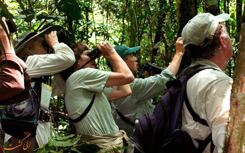 تورهای-طبیعت-گردی-آمازون-در-پرو