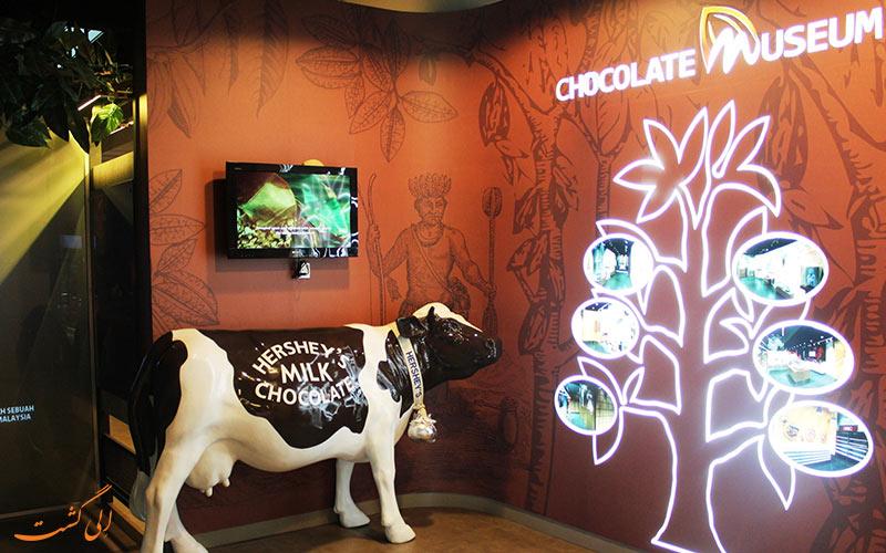 آشپزخانه شکلات | Chocolate Kitchen