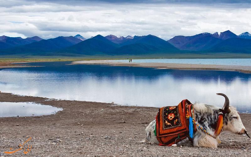دریاچه ی نامتسو