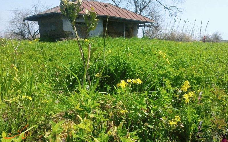 روستای گالشکا | Galesh Kola