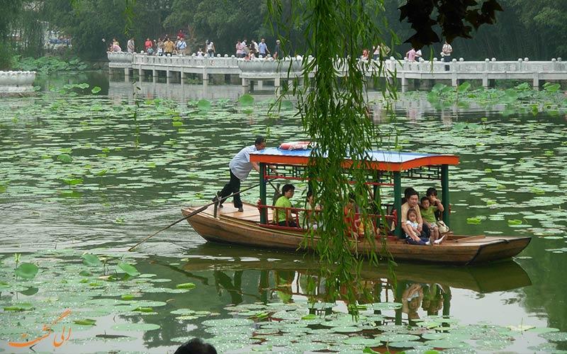 جاذبههای طبیعت گردی پکن در پارک بامبو