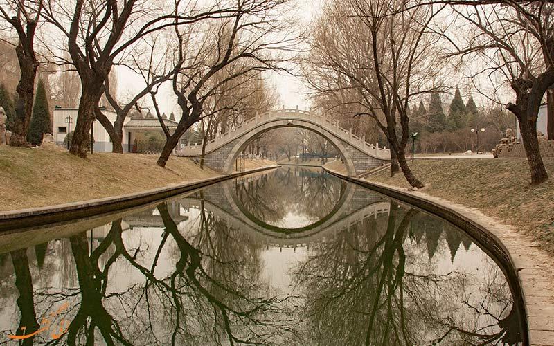 پارک بامبو بنفش از جاذبه های طبیعت گردی پکن