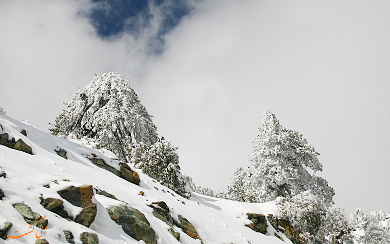 کوه دیدنی های قبرس المپ