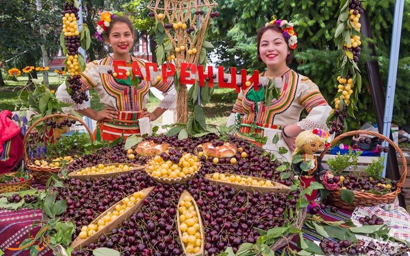 جشنواره گیلاس در کیوستندیل
