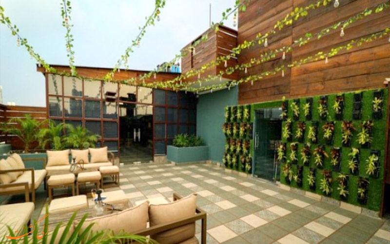 تراس سبز رنگ و پر گل رستوران سالت کافه کیتچن