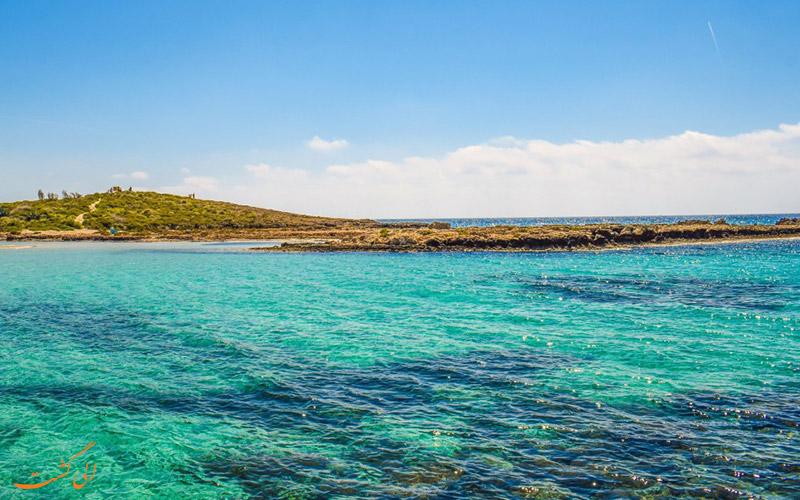 ساحل نیسی