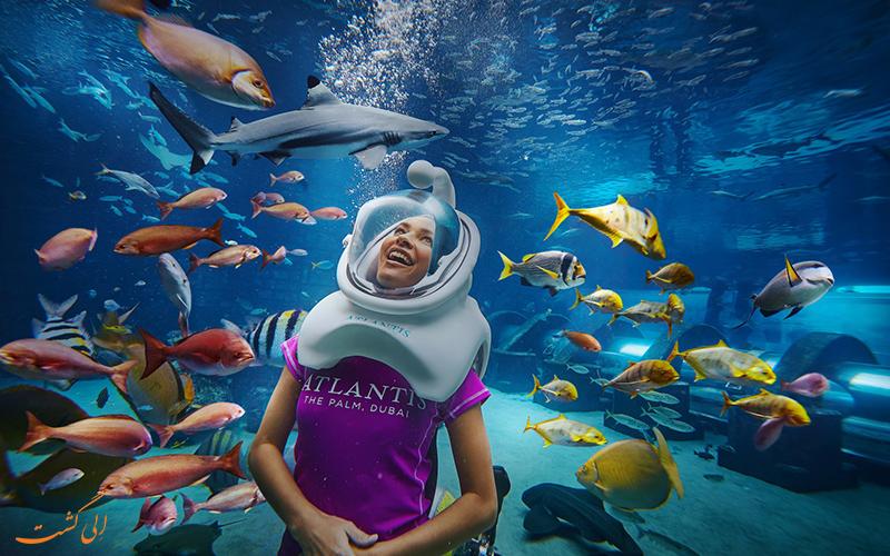 دنیای زیر آب دبی