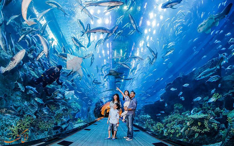 آکواریوم دبی و باغ وحش زیر آبی