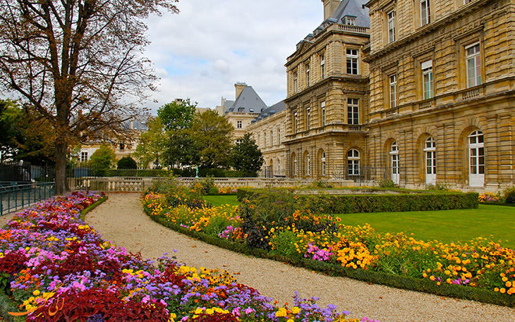 گل های پاریس در ماه ژوئن