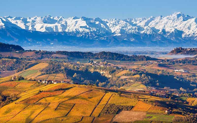 پیمونت در ایتالیا، تماشای تاکستان در سفر پاییزی به اروپا