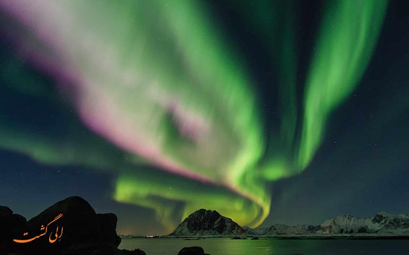 ناریان مار در نزدیکی قطب شمال