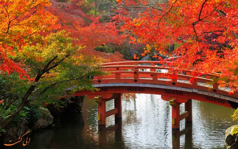 پاییز بهترین فصل برای مسافرت
